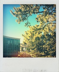 Campus today (cjazzlee) Tags: