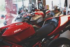 Lineup. (_RossMartin) Tags: camera original light red italy beauty logo lens photo italian focus forsale bokeh bikes line vehicle portfolio ducati job dealer