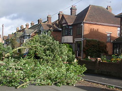 Clapgate Lane (Simon_K) Tags: storm st suffolk wind destruction debris gale falling jude fallen damage ipswich eastanglia stjudesstorm