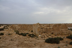 . (Uri ZACKHEM) Tags: village palestine zionism negev bedouins palestinians ethniccleansing naqab 1948war khalasa