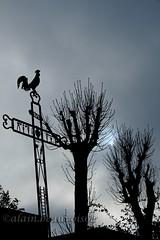""""""" Un coq, une croix et du gris..."""" ( Cassaigne/Gers ) (alain.beauvois62) Tags: gers"""