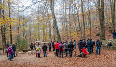 UROs. 2013 11 24 (Paco CT) Tags: autumn people fall gente otoo uro 2013 pacoct