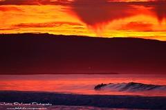 Mom & Baby Morning Surf (Wedger132) Tags: ocean california sky seascape beach nature water colors beautiful sunrise landscape lights nikon waves dolphin magic orangecounty babydolphin oceanscape nepwort justindelandphotography