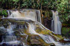 Santurio (Luiz C. Salama) Tags: brazil brasil rainforest selva falls jungle waterfalls cachoeira amazonas santuario amazonia cascata presidentefigueiredo naturewatcher
