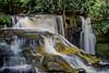 Santuário (Luiz C. Salama) Tags: brazil brasil rainforest selva falls jungle waterfalls cachoeira amazonas santuario amazonia cascata presidentefigueiredo naturewatcher