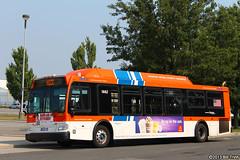 NICE Bus (llibllib) Tags: bus longisland orion ng cng nicebus