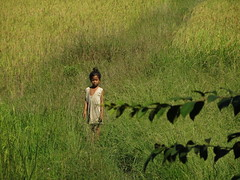 Cambodia - child in a green field (ashabot) Tags: people thailand