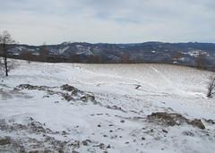 szemben a Rozsály /  in the background the Igniş Peak (debreczeniemoke) Tags: winter snow tree forest landscape hiking transylvania fa táj tájkép gutin erdély hó tél erdő túra rozsály canonpowershotsx20is gutinhegység munţiigutâi igniş munţiigutin