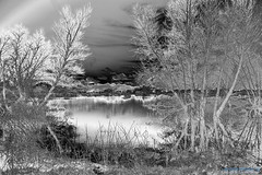 Dreams_and_Visions_01 (DonBantumPhotography.com) Tags: ed visions landscapes nikkor 28300mm afs nikon 13556g vr d800 donbantumphotographycom donbantumcom