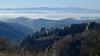 monte oliveto 3 (lotti roberto) Tags: valdorcia monteoliveto tuscany toscana collina nebbia fog day fav25 fav50 fav75