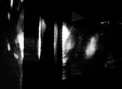 20140217 (zzkt) Tags: light shadow monochrome au glenelg greyscale f40 iso160 leicasummiluxm35mmf14asph leicam9 ¹⁄₂₅sec ¹⁄₂₅secatf40