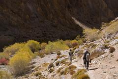 Sorra Gorge (Ziemek T) Tags: trek hike ladakh acrosskarnak