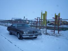Oldsmobile Cutlass (dave_7) Tags: classic car 70s oldsmobile cutlass