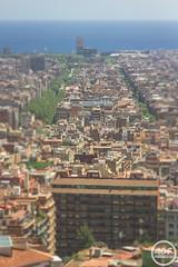 Landscape Barcelona (Alessando De Felice) Tags: sun spain sagradafamilia holliday viaggio boqueria