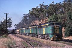 Quad Alcos at Sleeps Hill (Bingley Hall) Tags: train diesel transport engine rail railway transportation locomotive rpausa930class