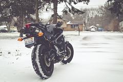 FZ6 Snow (Benji Reynolds) Tags: snow naked illinois motorcycle yamaha streetfighter roadster fz6