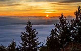 Malahat Sunrise