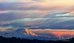 Last Light on Mt. Rainier (matthawkphoto) Tags: seattle sunset rainier lakewashington