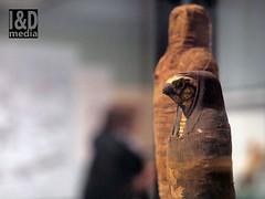 mummyhawk1 (Internet & Digital) Tags: cats ancient god hawk victorian egypt ibis horus ritual mummy isis sacrifice osirus ancientegypt offerings mummified thoth mummifiedcats