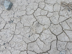 Drying Up (PickerManBlues) Tags: california ca sand desert dry soil dirt drought drying cracking
