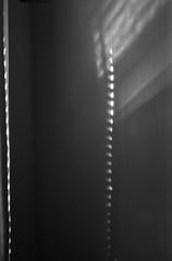 Tiny holes (yellowgreywolf) Tags: wall blackwhite indoors blinds tinyholes yellowgreywolf