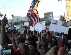 Dems embrace of Violence will guarantee Trump Win (whiteoutpress) Tags: sanjose violence republican trump supporters attacked