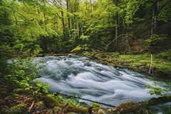 STZ_4952fb (szugic) Tags: trees mountain lake green nature river rainyday forrest jungle waterfalls silky biogradskojezero biogradlake biogradriver