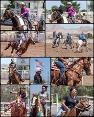 0521 LVGA GYMKHANA (JRmanNn) Tags: horses lasvegas hsa lvga hendersonsaddleassociation lasvegasgymkhanaassociation
