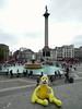 Swami at Trafalgar Square (ashabot) Tags: world city travel england london yellow squares cities trafalgarsquare cityscenes famousplaces travelingcompanion worldcities