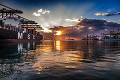 Valencia port II (Paco Herrero) Tags: sky port sunrise puerto amanecer cielo sunrays msc rayosdesol spreader noatum