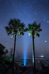 Stargazing (dlos') Tags: ocean trees tree beach sc beautiful night dark stars boats lights star waves southcarolina astro palm coastal astrophotography eno hammock shooting meteor celestial geminid capersisland awendah