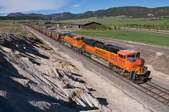 BNSF 9134 Spruce 22 May 16 (AK Ween) Tags: railroad train colorado spruce bnsf pikespeak rampartrange emd coaltrain sd70ace jointline bnsf9134