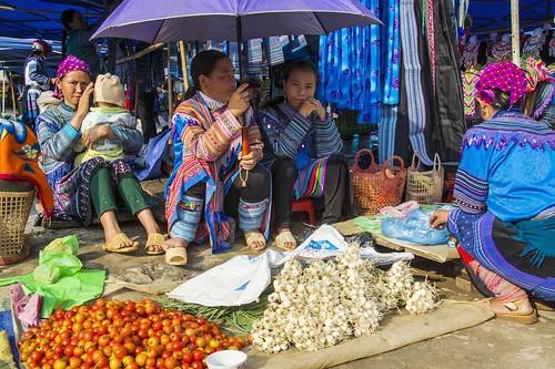 bac ha -vietnam 26