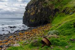 june 26-3 (Robjmitchell) Tags: ocean green beach grass waves cliffs basalt