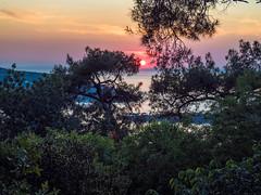 Sunset from Heybeliada (pureblue42) Tags: olympus heybeliada omd em5
