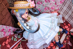 (nanatsuhachi) Tags: doll bjd  resin juliet daydream daydreamer bluefairy holidaychoice blossombody  daydreamdoll daydreamjuliet
