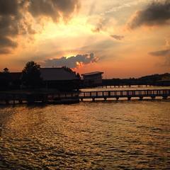 18 (webmastermama71) Tags: trees sunset sky sun clouds sunrise evening dusk silhouettes sunsets sunny sunsetting sunshots sunsetphotography silhouettephotography
