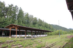 Jedlina-Zdrj train station 11.06.2016 (szogun000) Tags: railroad station canon tracks poland polska rail railway platforms pkp lowersilesia dolnolskie dolnylsk canoneos550d canonefs18135mmf3556is jedlinazdrj d29285 d29286