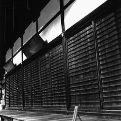 c330 adox 20 - 995 LR1 (Mel Enc) Tags: travel bw 6x6 mamiya tlr film japan analog mediumformat blackwhite kyoto 120film epson v600 filmcamera japaneseshrine iso20 adox mamiyasekor 80mmf28 slowfilm filmnegative c330f imamiyashrine adoxcms20ii