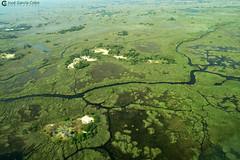 15-09-20 Ruta Okavango Botswana (118) R01 (Nikobo3) Tags: travel parque paisajes naturaleza color canon ngc delta unesco viajes botswana okavango vuelo twop frica vidasalvaje g7x omot deltadelokavango flickrtravelaward canong7x nikobo josgarcacobo todosloscomentarios