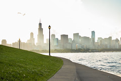Chicago Lakefront Trail (alexgeorgeny) Tags: ocean sunset summer sun lake chicago green tower water grass fog skyline skyscraper spring nikon sears chase lightpole d3200 d5100