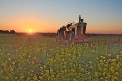 Case 830-explored (wdterp) Tags: sunset summer tractor rural landscape evening farm case pasture 830