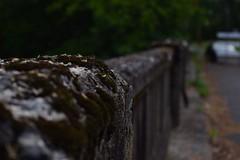 DSC_0306 (moyer.gabriel) Tags: bridge abandoned nature water girl model nikon cabby