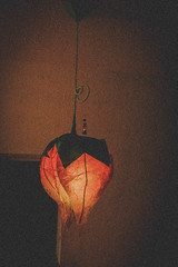 Productiv_1.1 (Homi.) Tags: flower art lamp lampe diy do kunst it yourself productiv