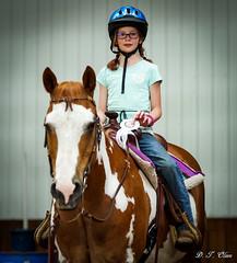 Show day-44 (Webbed Foot Photo) Tags: horses horse pennsylvania ponycamp webbedfootphotography pentaxk1 opengateranch darrenolsen dtolsen webbedfootphoto hunterhillsfarm