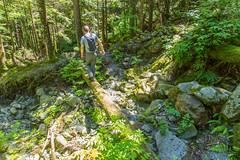 IMG_6599 (Bob_2006) Tags: june hike 2016 goldenearsprovincialpark evansvalley