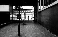 By crossing the alley (pascalcolin1) Tags: light blackandwhite reflection alley noiretblanc lumire reflets streetview paris13 alle photoderue urbanarte photopascalcolin