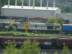 60090 Toton 08/06/2013 (37686) Tags: 5 66 class type tug 60 midlands ews toton railfreight dbschenker