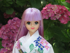 july 067 (Mowsecat) Tags: flower castle hair japanese lavender yukata kimono takara licca