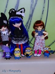 Kedada (21/07/13) (> Lily <) Tags: doll little group meeting inside pullip fee eris ante minion obitsu cinciallegra byul littlefee rewiged